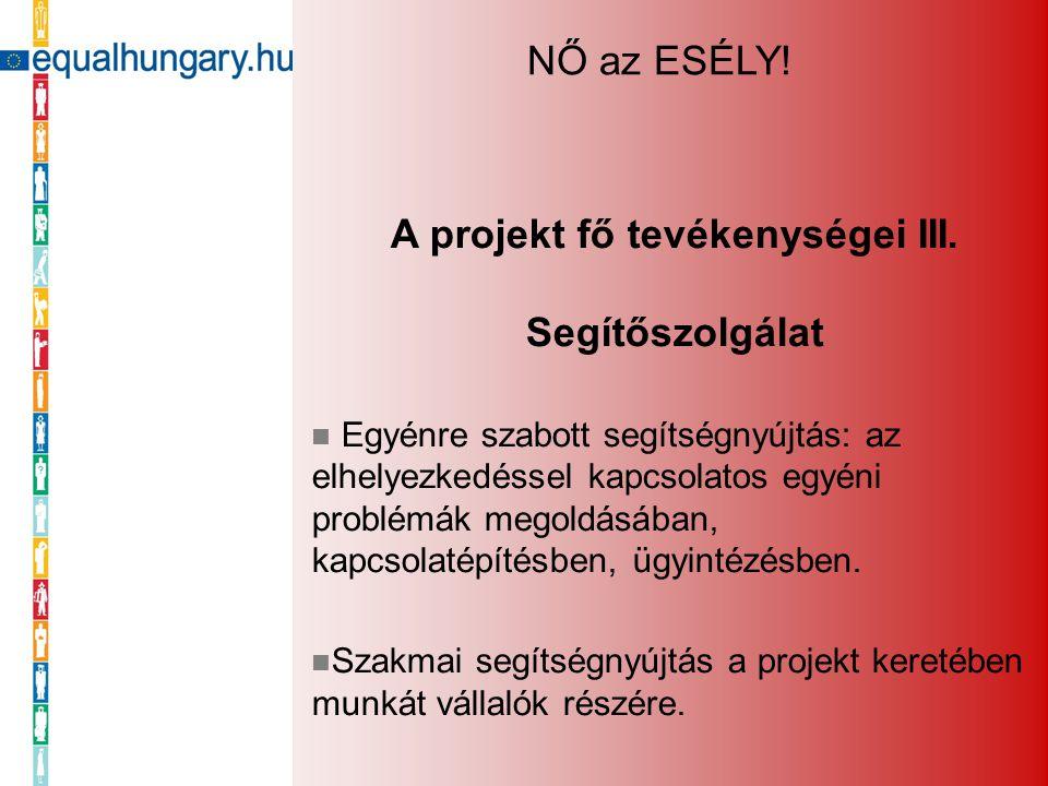 A projekt fő tevékenységei III. Segítőszolgálat Egyénre szabott segítségnyújtás: az elhelyezkedéssel kapcsolatos egyéni problémák megoldásában, kapcso
