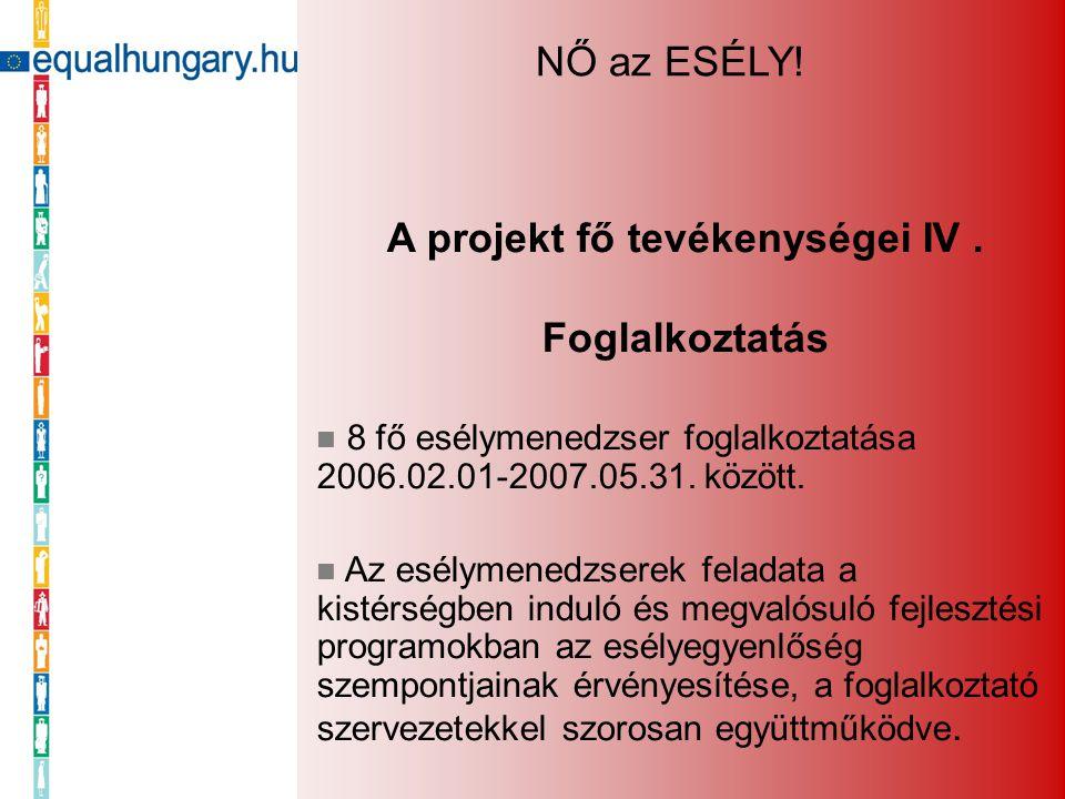 A projekt fő tevékenységei IV. Foglalkoztatás 8 fő esélymenedzser foglalkoztatása 2006.02.01-2007.05.31. között. Az esélymenedzserek feladata a kistér
