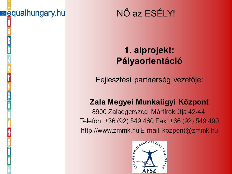 1. alprojekt: Pályaorientáció Fejlesztési partnerség vezetője: Zala Megyei Munkaügyi Központ 8900 Zalaegerszeg, Mártírok útja 42-44. Telefon: +36 (92)