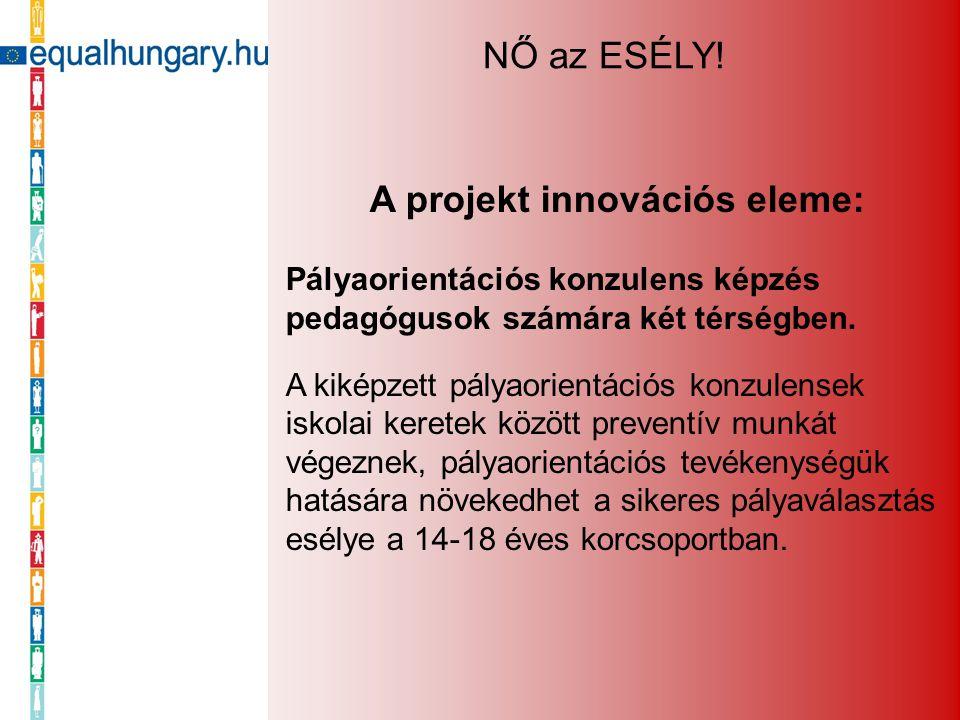 A projekt innovációs eleme: Pályaorientációs konzulens képzés pedagógusok számára két térségben. A kiképzett pályaorientációs konzulensek iskolai kere