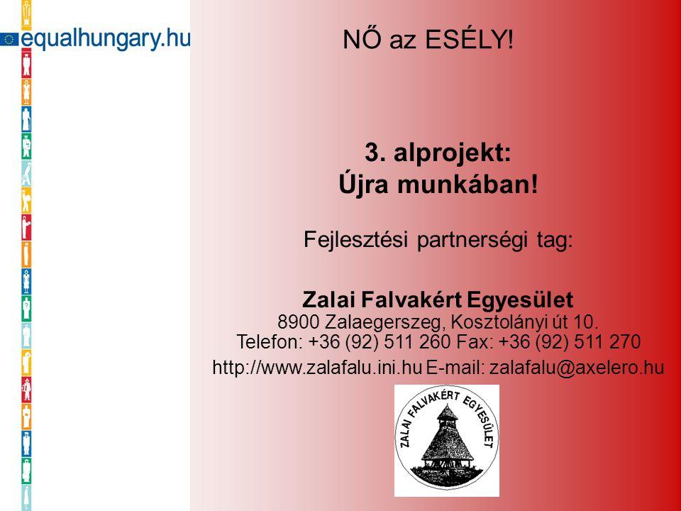 3. alprojekt: Újra munkában! Fejlesztési partnerségi tag: Zalai Falvakért Egyesület 8900 Zalaegerszeg, Kosztolányi út 10. Telefon: +36 (92) 511 260 Fa