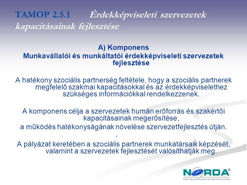 TAMOP 2.5.1Érdekképviseleti szervezetek kapacitásainak fejlesztése A) Komponens Munkavállalói és munkáltatói érdekképviseleti szervezetek fejlesztése A hatékony szociális partnerség feltétele, hogy a szociális partnerek megfelelő szakmai kapacitásokkal és az érdekképviselethez szükséges információkkal rendelkezzenek.