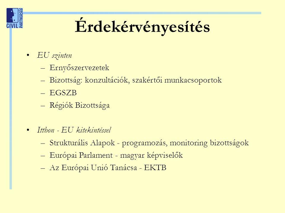 Érdekérvényesítés EU szinten –Ernyőszervezetek –Bizottság: konzultációk, szakértői munkacsoportok –EGSZB –Régiók Bizottsága Itthon - EU kitekintéssel –Strukturális Alapok - programozás, monitoring bizottságok –Európai Parlament - magyar képviselők –Az Európai Unió Tanácsa - EKTB