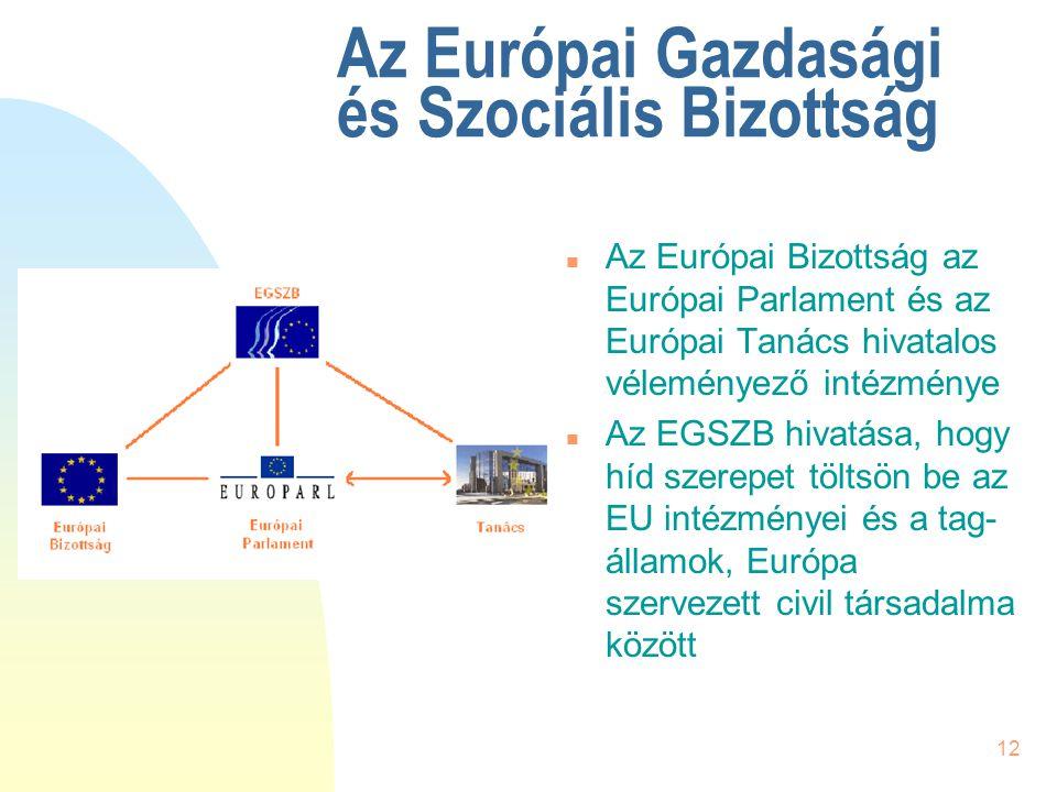 12 Az Európai Gazdasági és Szociális Bizottság n Az Európai Bizottság az Európai Parlament és az Európai Tanács hivatalos véleményező intézménye n Az