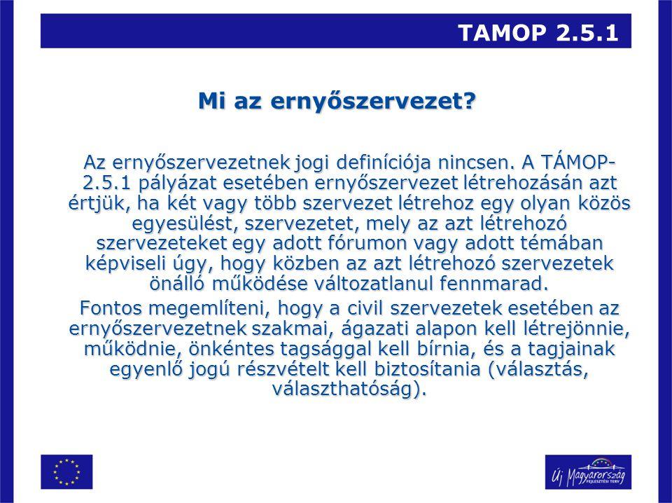 TAMOP 2.5.1 Mi az ernyőszervezet. Az ernyőszervezetnek jogi definíciója nincsen.
