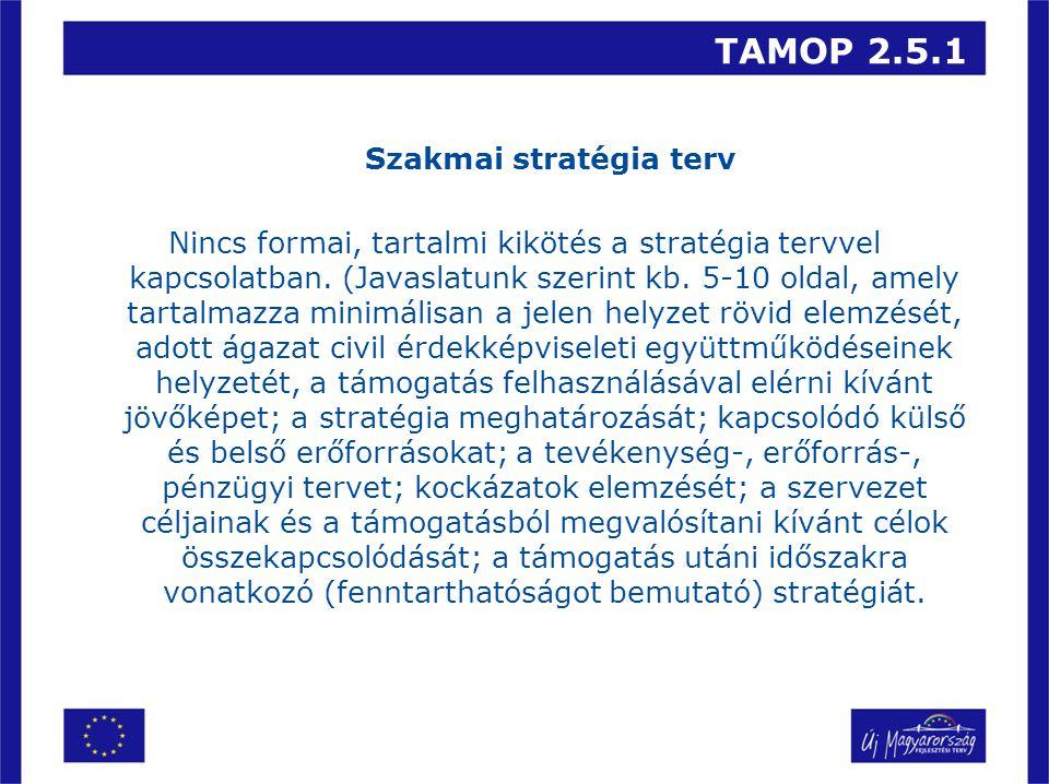 TAMOP 2.5.1 Szakmai stratégia terv Nincs formai, tartalmi kikötés a stratégia tervvel kapcsolatban.