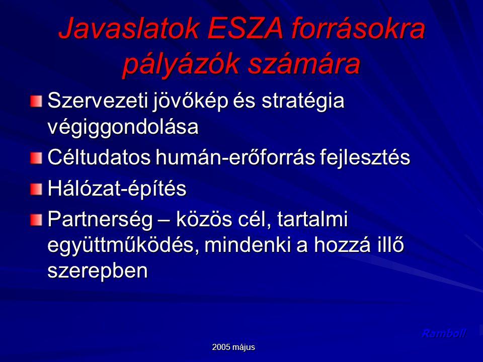 2005 május Ramboll Javaslatok ESZA forrásokra pályázók számára Szervezeti jövőkép és stratégia végiggondolása Céltudatos humán-erőforrás fejlesztés Hálózat-építés Partnerség – közös cél, tartalmi együttműködés, mindenki a hozzá illő szerepben