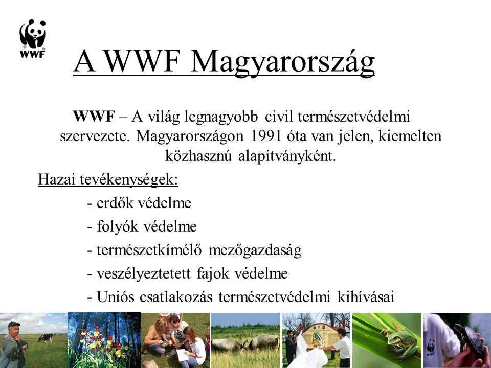 WWF – A világ legnagyobb civil természetvédelmi szervezete.