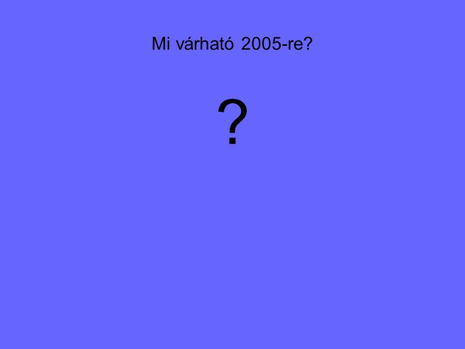 Mi várható 2005-re