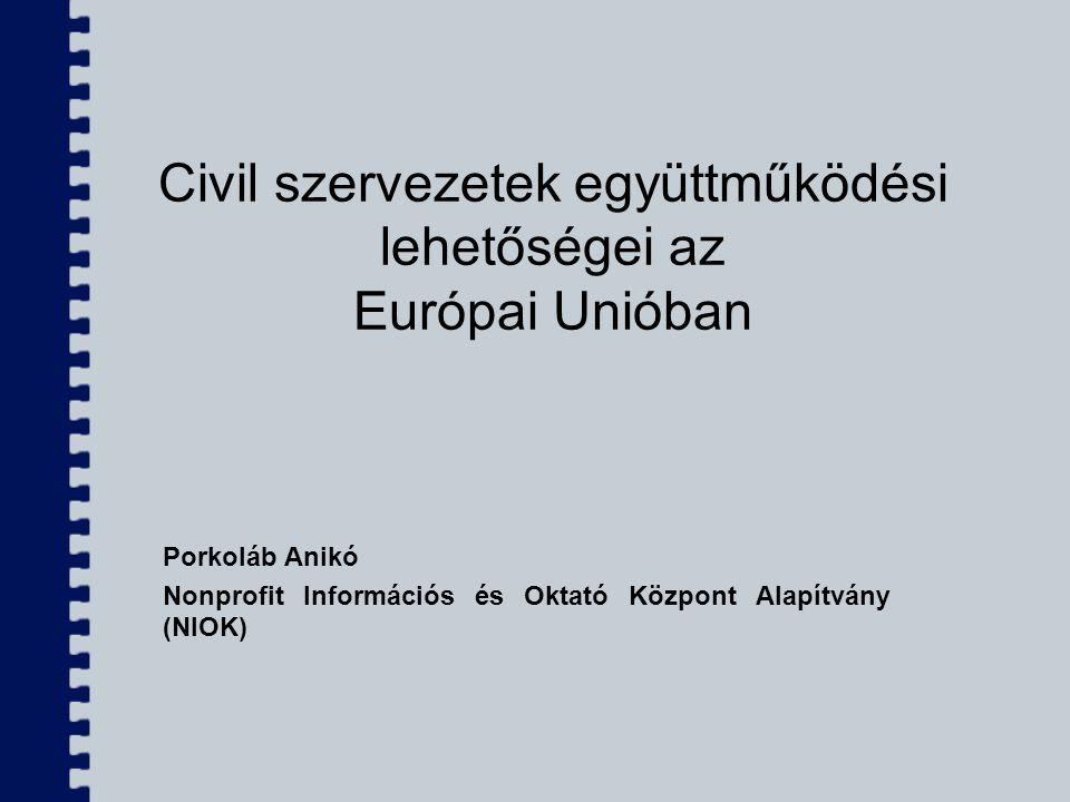 Civil szervezetek együttműködési lehetőségei az Európai Unióban Porkoláb Anikó Nonprofit Információs és Oktató Központ Alapítvány (NIOK)