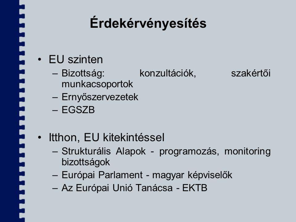 Érdekérvényesítés EU szinten –Bizottság: konzultációk, szakértői munkacsoportok –Ernyőszervezetek –EGSZB Itthon, EU kitekintéssel –Strukturális Alapok