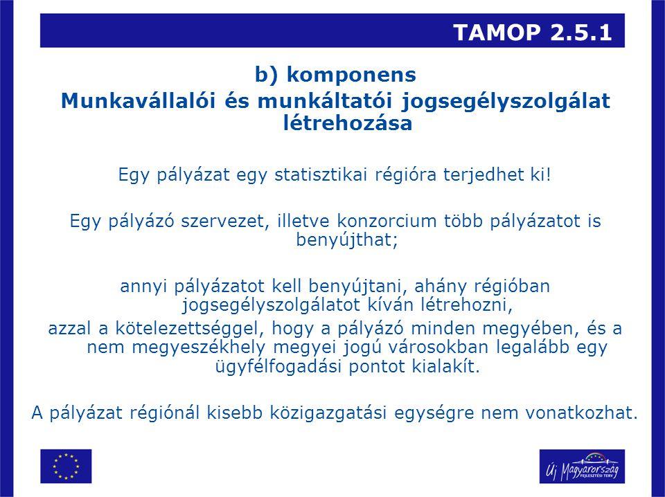 TAMOP 2.5.1 b) komponens Munkavállalói és munkáltatói jogsegélyszolgálat létrehozása Egy pályázat egy statisztikai régióra terjedhet ki.