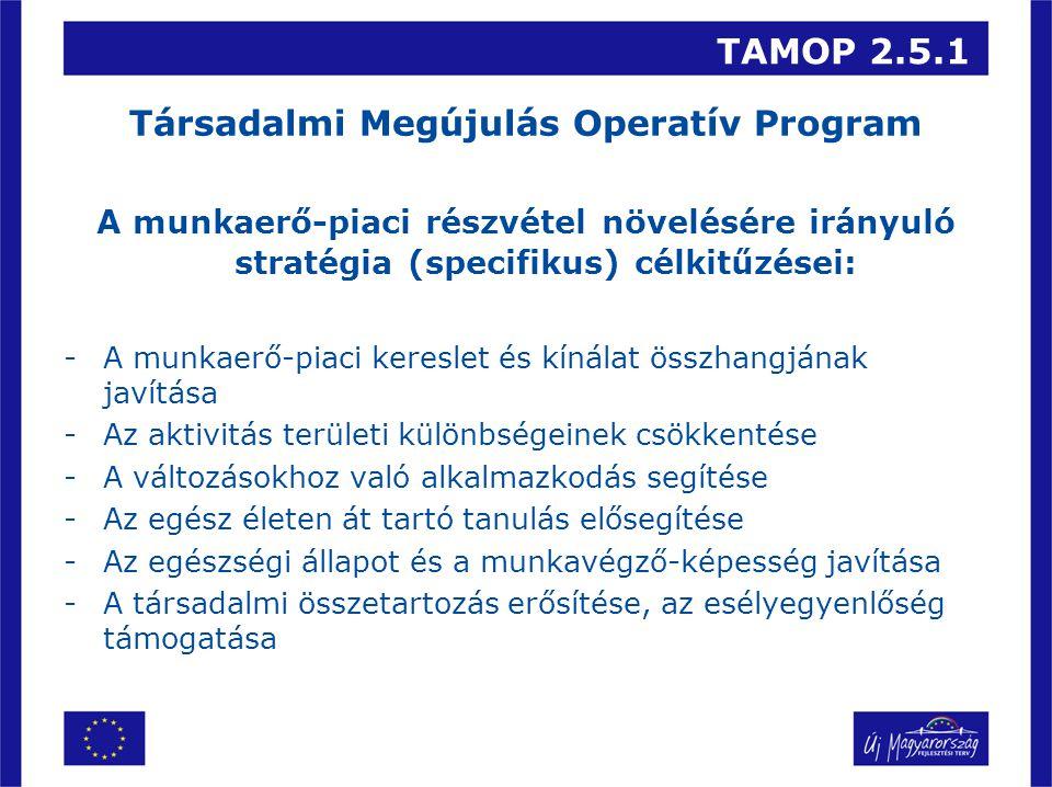 TAMOP 2.5.1 Társadalmi Megújulás Operatív Program A munkaerő-piaci részvétel növelésére irányuló stratégia (specifikus) célkitűzései: -A munkaerő-piaci kereslet és kínálat összhangjának javítása -Az aktivitás területi különbségeinek csökkentése -A változásokhoz való alkalmazkodás segítése -Az egész életen át tartó tanulás elősegítése -Az egészségi állapot és a munkavégző-képesség javítása -A társadalmi összetartozás erősítése, az esélyegyenlőség támogatása