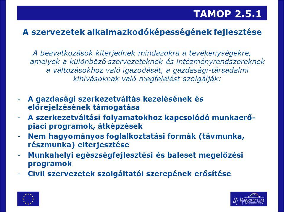 TAMOP 2.5.1 A szervezetek alkalmazkodóképességének fejlesztése A beavatkozások kiterjednek mindazokra a tevékenységekre, amelyek a különböző szervezeteknek és intézményrendszereknek a változásokhoz való igazodását, a gazdasági-társadalmi kihívásoknak való megfelelést szolgálják: -A gazdasági szerkezetváltás kezelésének és előrejelzésének támogatása -A szerkezetváltási folyamatokhoz kapcsolódó munkaerő- piaci programok, átképzések -Nem hagyományos foglalkoztatási formák (távmunka, részmunka) elterjesztése -Munkahelyi egészségfejlesztési és baleset megelőzési programok -Civil szervezetek szolgáltatói szerepének erősítése
