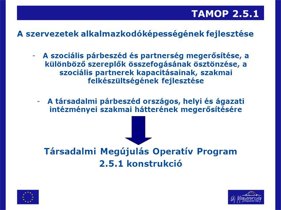 TAMOP 2.5.1 A szervezetek alkalmazkodóképességének fejlesztése -A szociális párbeszéd és partnerség megerősítése, a különböző szereplők összefogásának ösztönzése, a szociális partnerek kapacitásainak, szakmai felkészültségének fejlesztése -A társadalmi párbeszéd országos, helyi és ágazati intézményei szakmai hátterének megerősítésére Társadalmi Megújulás Operatív Program 2.5.1 konstrukció