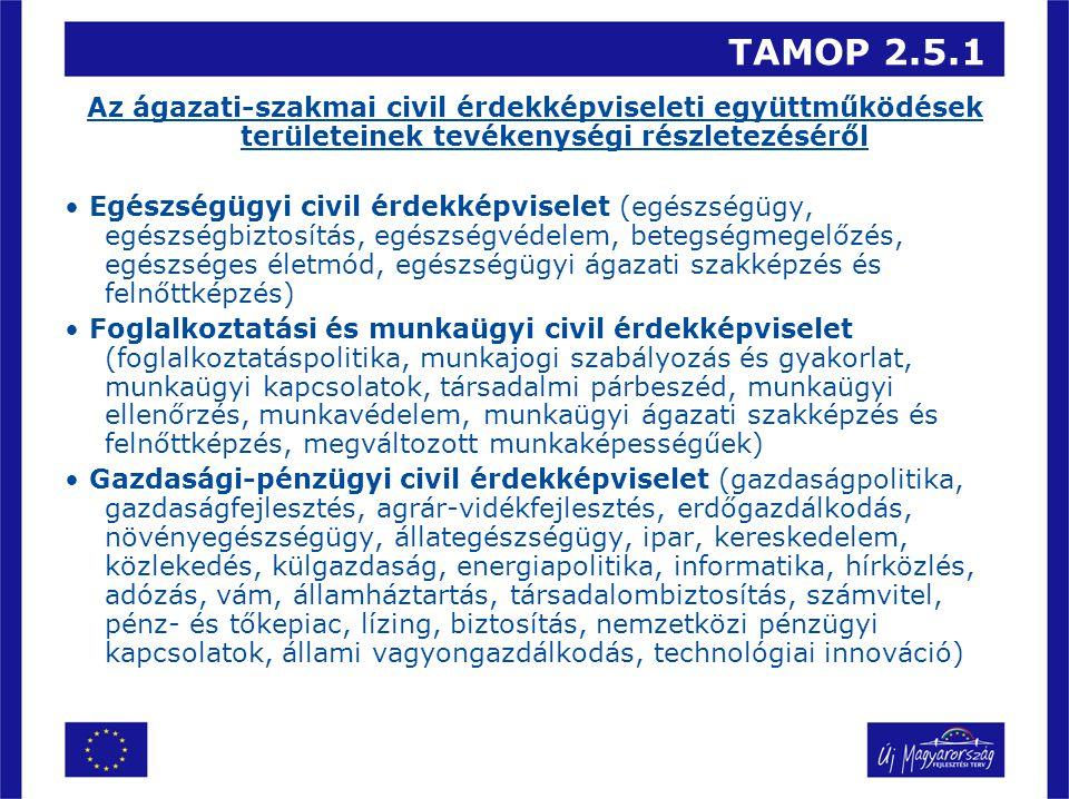 TAMOP 2.5.1 Az ágazati-szakmai civil érdekképviseleti együttműködések területeinek tevékenységi részletezéséről Egészségügyi civil érdekképviselet (eg