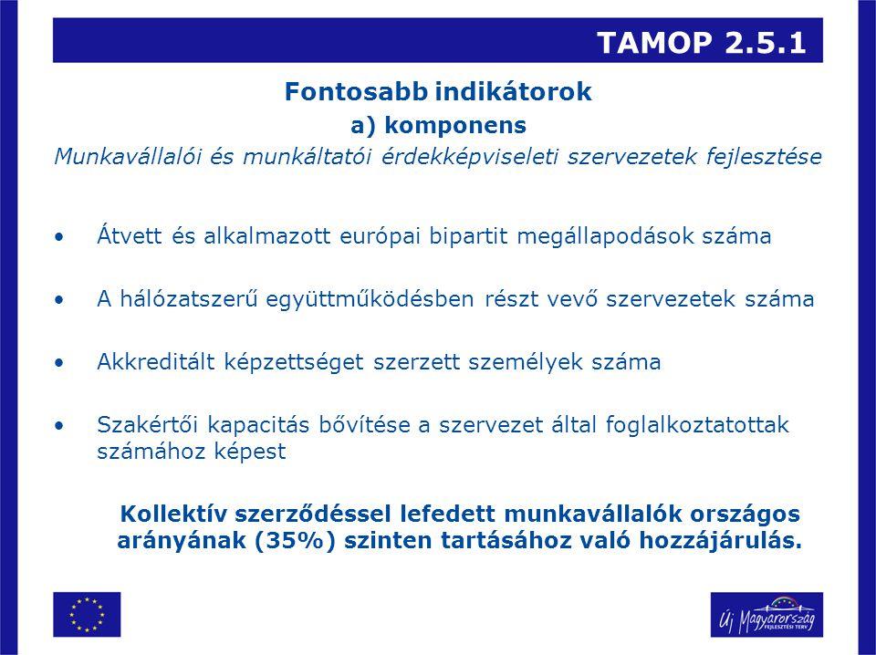 TAMOP 2.5.1 Fontosabb indikátorok a) komponens Munkavállalói és munkáltatói érdekképviseleti szervezetek fejlesztése Átvett és alkalmazott európai bip