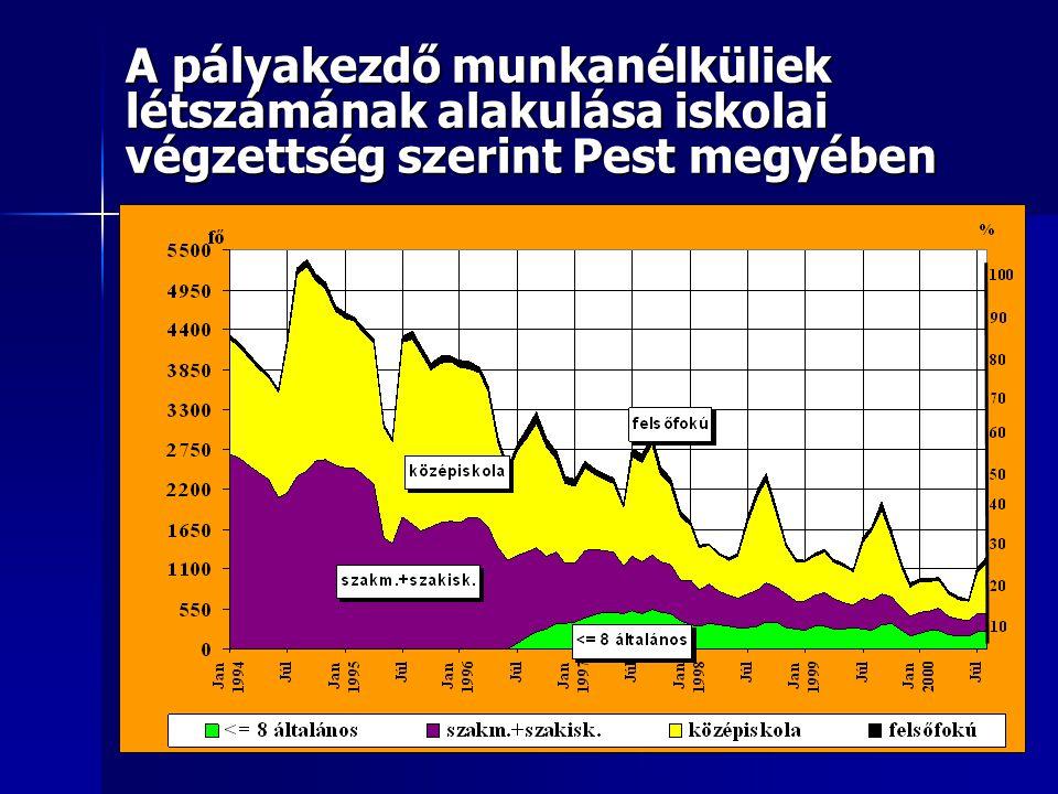 A pályakezdő munkanélküliek létszámának alakulása Pest megyében 1991-2003. között Pályakezdő munkanélküliek
