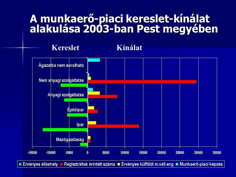 A munkaerő-piaci kereslet-kínálat alakulása 2003-ban Pest megyében KeresletKínálat