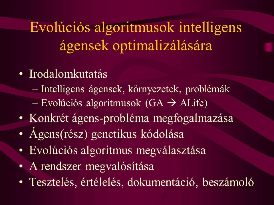 Irodalomkutatás –Intelligens ágensek, környezetek, problémák –Evolúciós algoritmusok (GA  ALife) Konkrét ágens-probléma megfogalmazása Ágens(rész) genetikus kódolása Evolúciós algoritmus megválasztása A rendszer megvalósítása Tesztelés, értélelés, dokumentáció, beszámoló