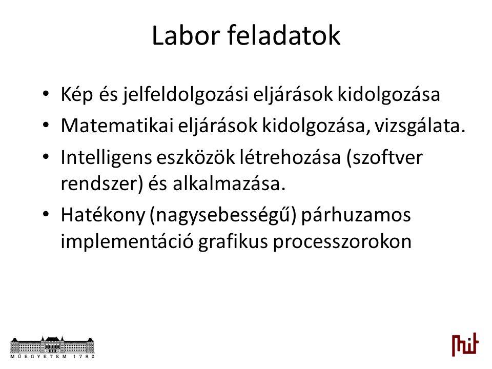 Labor feladatok Kép és jelfeldolgozási eljárások kidolgozása Matematikai eljárások kidolgozása, vizsgálata. Intelligens eszközök létrehozása (szoftver
