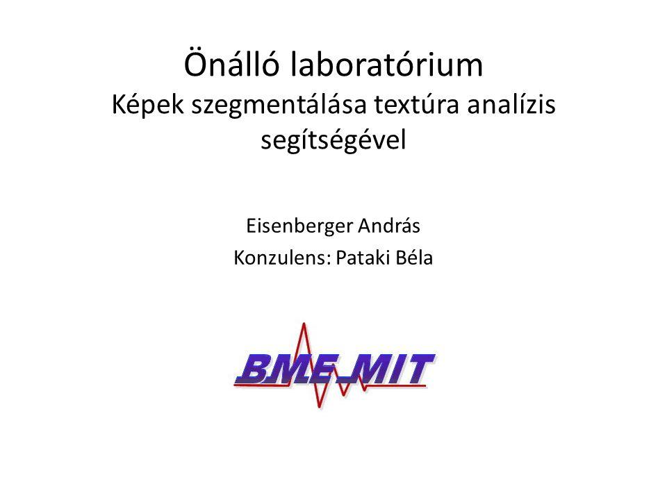 Önálló laboratórium Képek szegmentálása textúra analízis segítségével Eisenberger András Konzulens: Pataki Béla