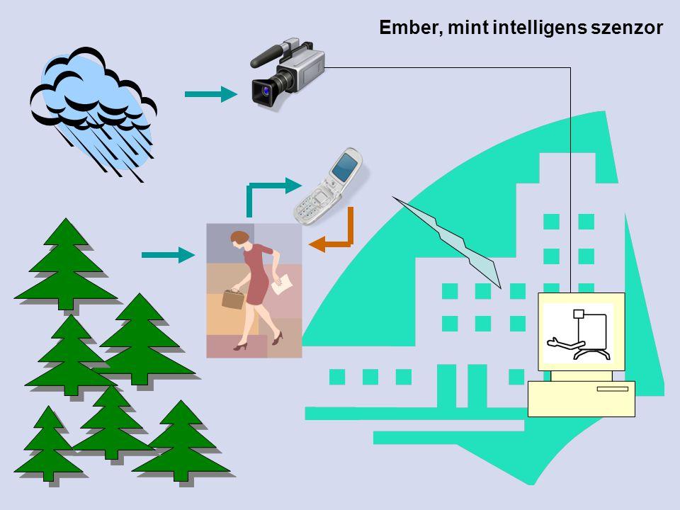 Intelligens tér AmI kisérletek az MI laborban Ágens szervezetek