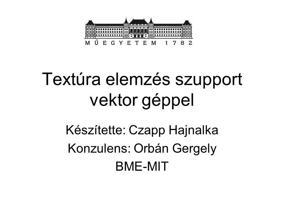 Textúra elemzés szupport vektor géppel Készítette: Czapp Hajnalka Konzulens: Orbán Gergely BME-MIT