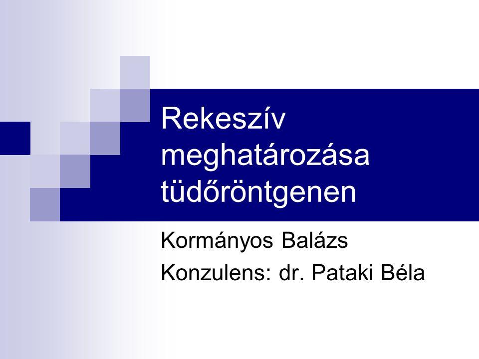 Rekeszív meghatározása tüdőröntgenen Kormányos Balázs Konzulens: dr. Pataki Béla