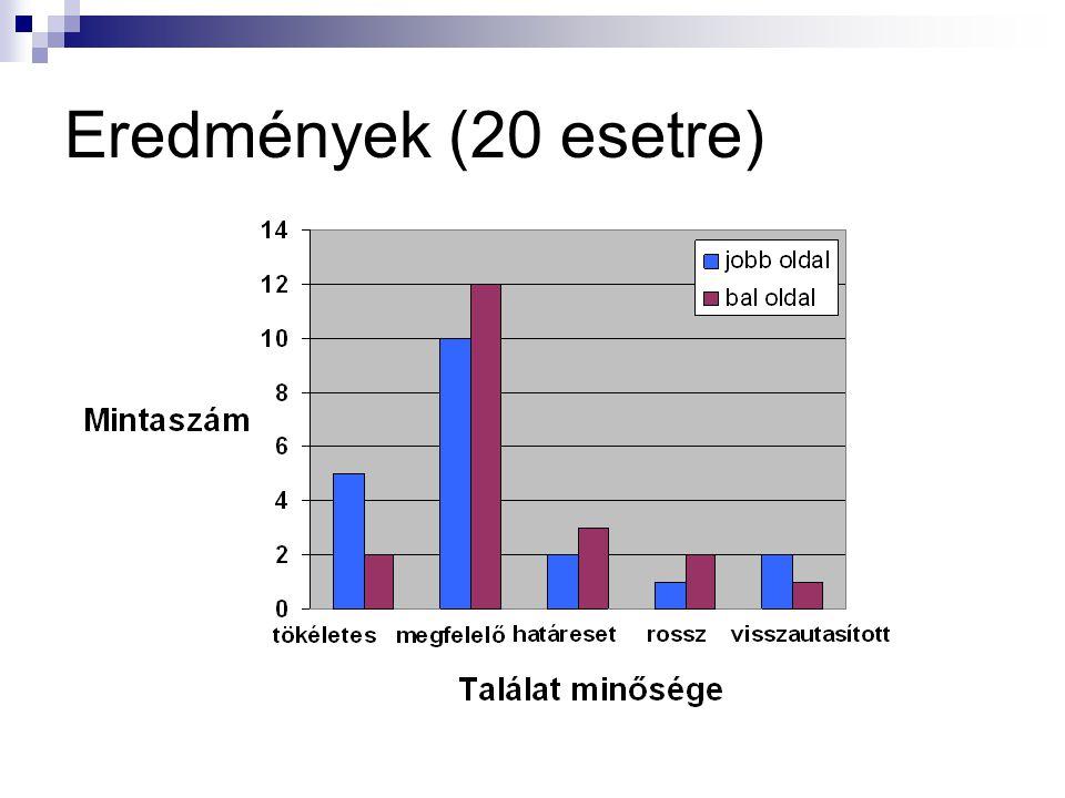 Eredmények (20 esetre)