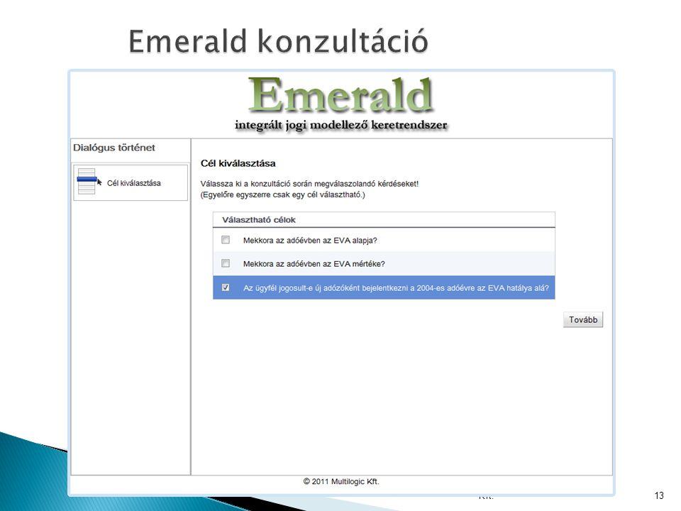 Multilogic Tanácsadó és Informatikai Kft.13