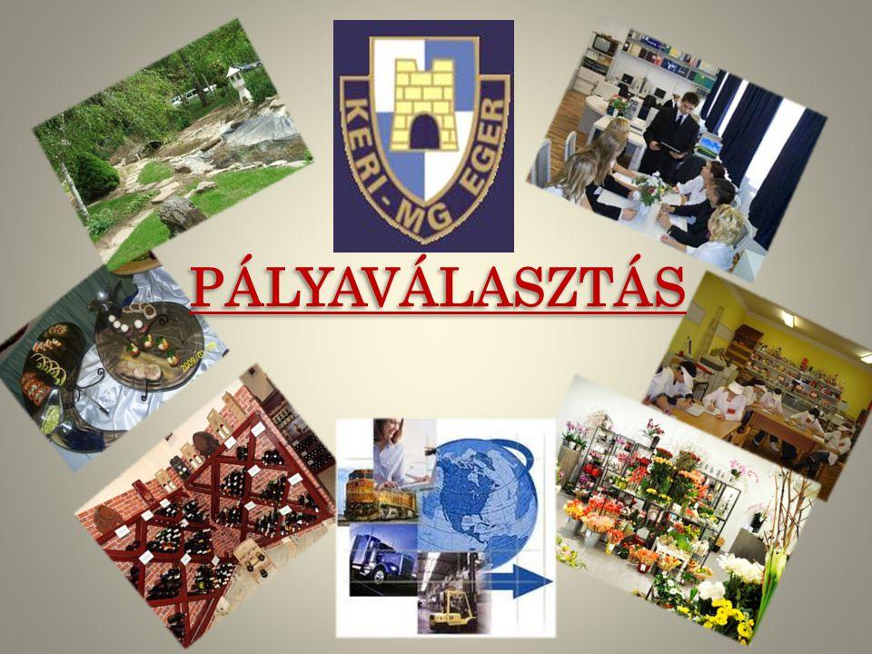 PÁLYAVÁLASZTÁS
