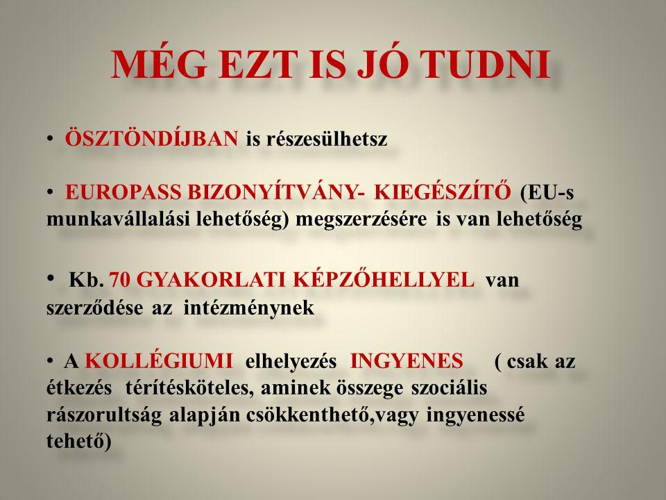 MÉG EZT IS JÓ TUDNI ÖSZTÖNDÍJBAN is részesülhetsz EUROPASS BIZONYÍTVÁNY- KIEGÉSZÍTŐ (EU-s munkavállalási lehetőség) megszerzésére is van lehetőség Kb.