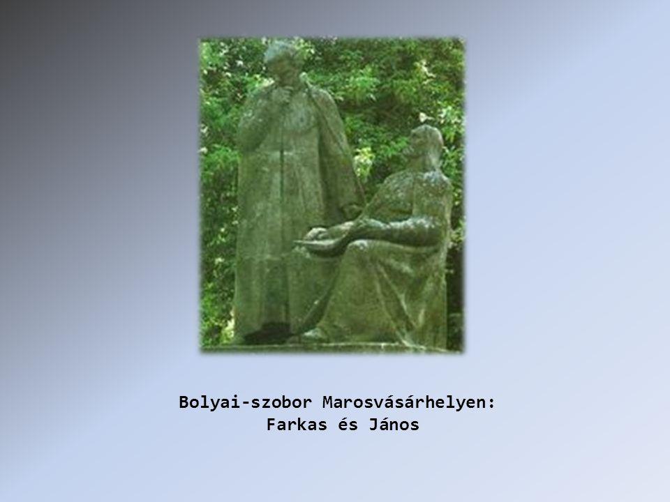 Bolyai-szobor Marosvásárhelyen: Farkas és János