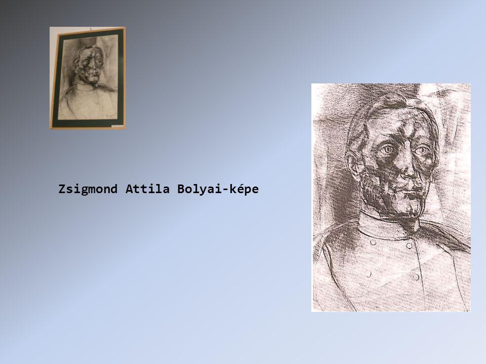Zsigmond Attila Bolyai-képe