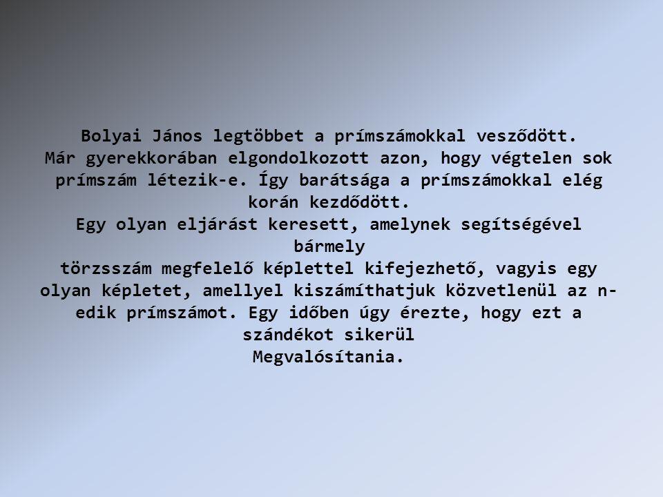 Bolyai János legtöbbet a prímszámokkal vesződött.