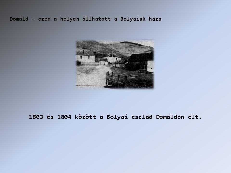 1803 és 1804 között a Bolyai család Domáldon élt. Domáld - ezen a helyen állhatott a Bolyaiak háza