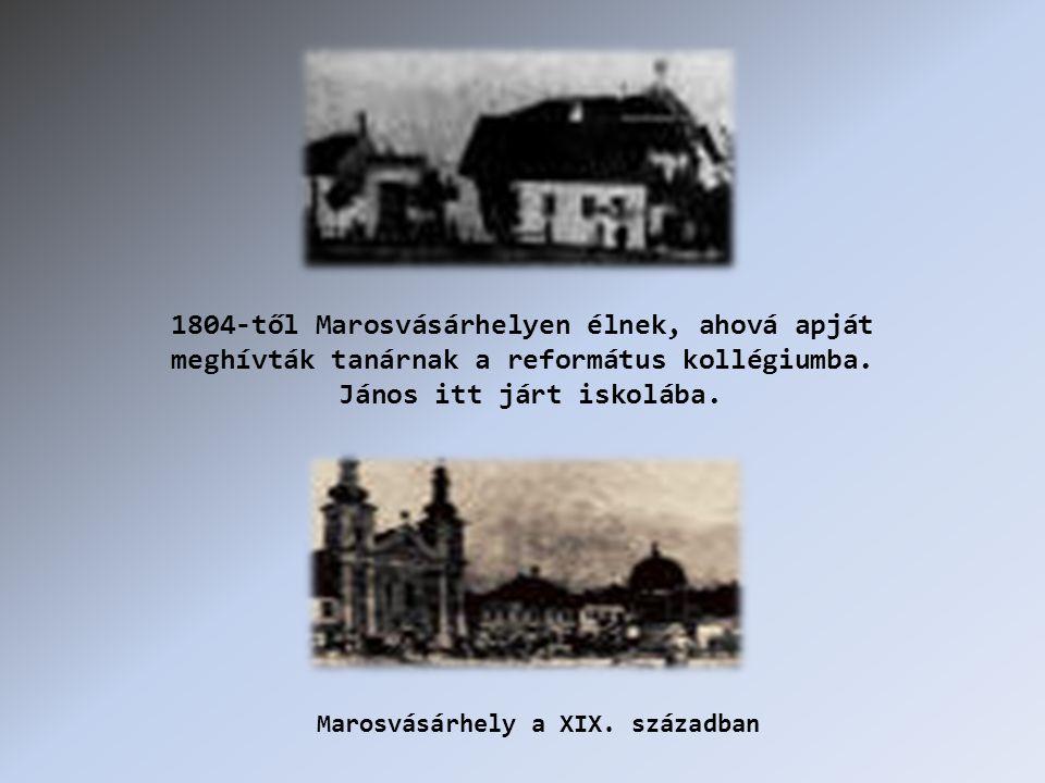 1804-től Marosvásárhelyen élnek, ahová apját meghívták tanárnak a református kollégiumba.