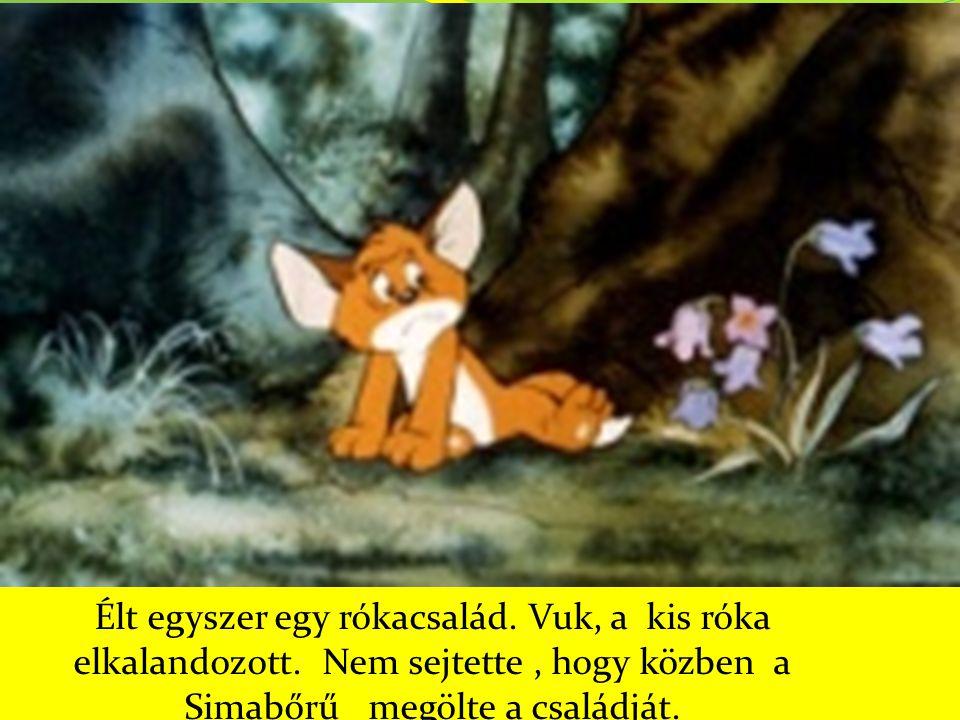 Élt egyszer egy rókacsalád. Vuk, a kis róka elkalandozott. Nem sejtette, hogy közben a Simabőrű megölte a családját.