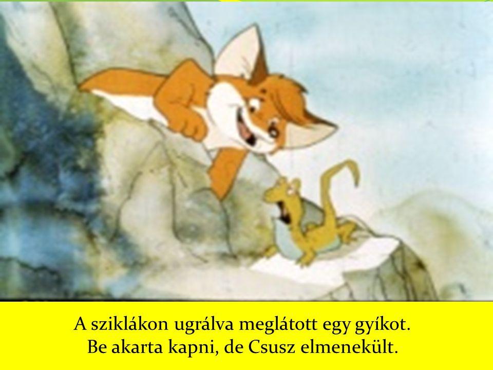 A sziklákon ugrálva meglátott egy gyíkot. Be akarta kapni, de Csusz elmenekült.