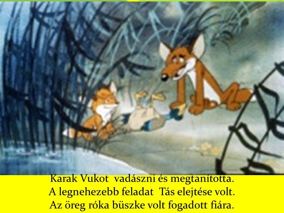 Karak Vukot vadászni és megtanította. A legnehezebb feladat Tás elejtése volt. Az öreg róka büszke volt fogadott fiára.