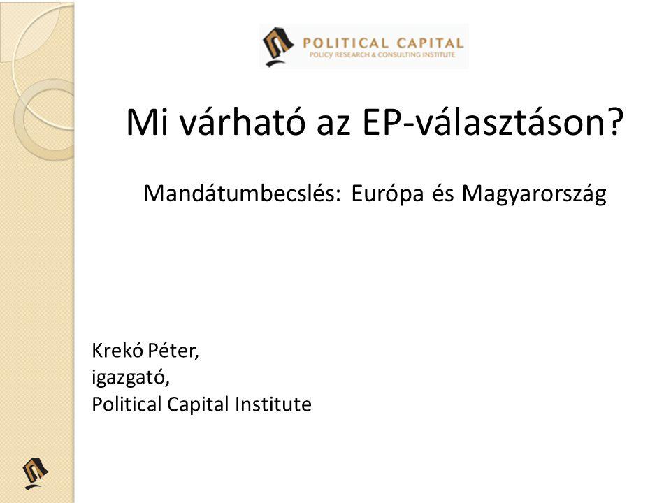 Mi várható az EP-választáson.