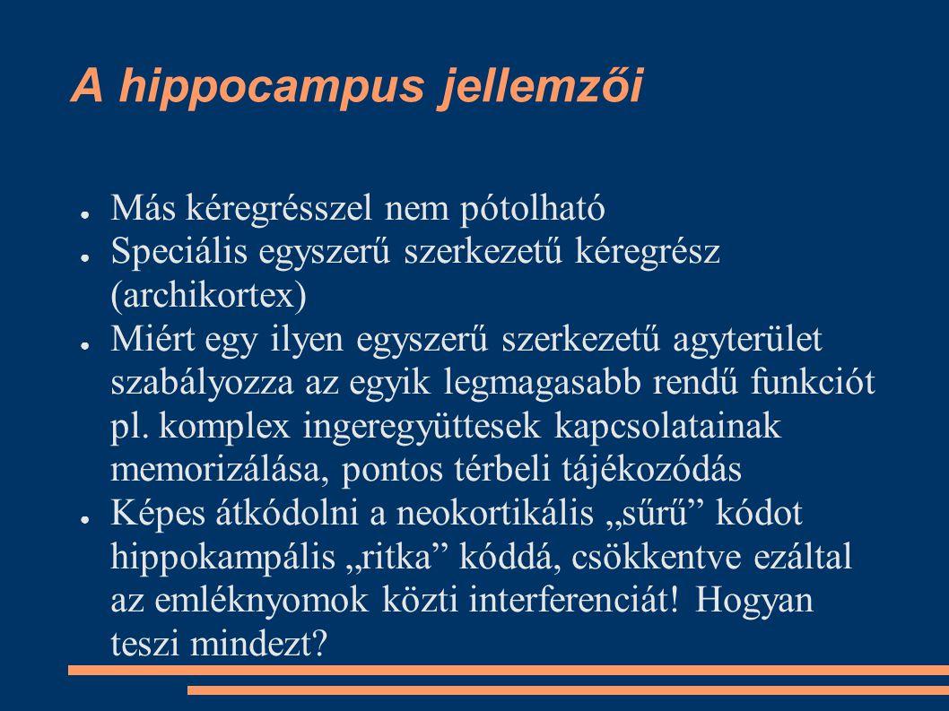 A hippocampus jellemzői ●M●Más kéregrésszel nem pótolható ●S●Speciális egyszerű szerkezetű kéregrész (archikortex) ●M●Miért egy ilyen egyszerű szerkez