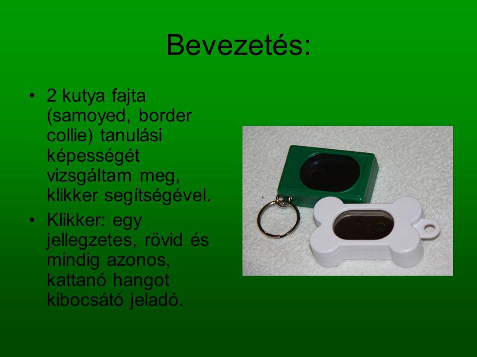 Bevezetés: 2 kutya fajta (samoyed, border collie) tanulási képességét vizsgáltam meg, klikker segítségével. Klikker: egy jellegzetes, rövid és mindig