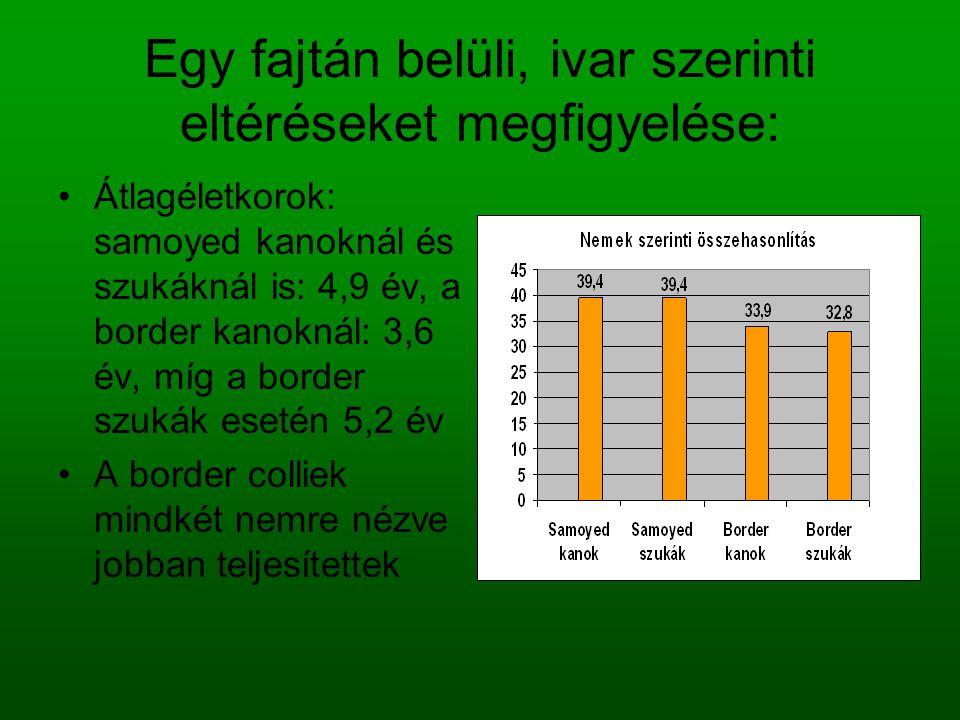 Egy fajtán belüli, ivar szerinti eltéréseket megfigyelése: Átlagéletkorok: samoyed kanoknál és szukáknál is: 4,9 év, a border kanoknál: 3,6 év, míg a