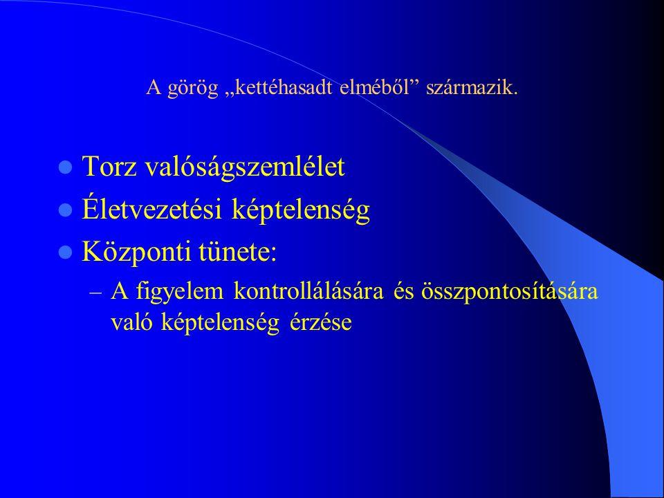 """A görög """"kettéhasadt elméből"""" származik. Torz valóságszemlélet Életvezetési képtelenség Központi tünete: – A figyelem kontrollálására és összpontosítá"""