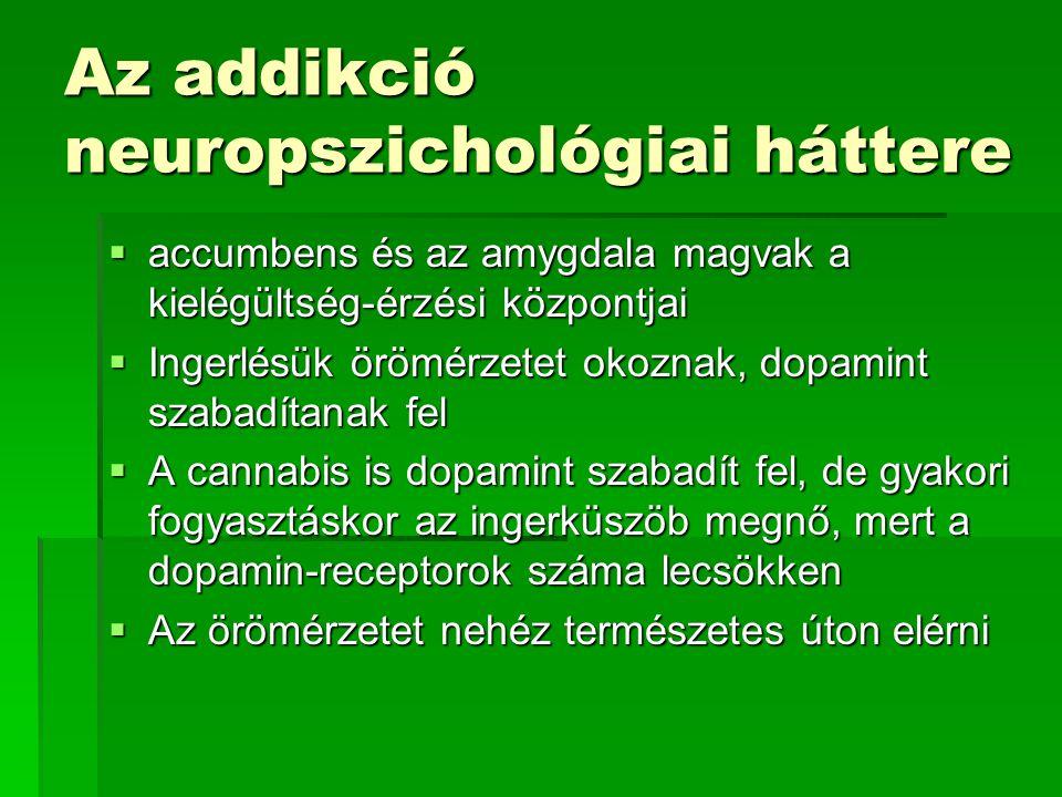 Az addikció neuropszichológiai háttere  accumbens és az amygdala magvak a kielégültség-érzési központjai  Ingerlésük örömérzetet okoznak, dopamint s