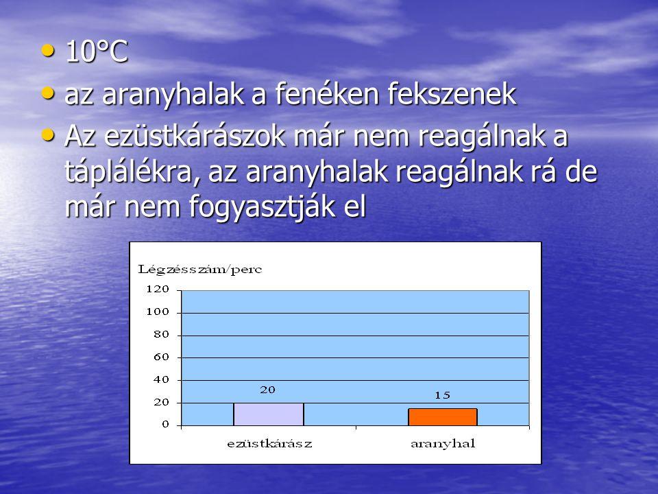 10°C 10°C az aranyhalak a fenéken fekszenek az aranyhalak a fenéken fekszenek Az ezüstkárászok már nem reagálnak a táplálékra, az aranyhalak reagálnak rá de már nem fogyasztják el Az ezüstkárászok már nem reagálnak a táplálékra, az aranyhalak reagálnak rá de már nem fogyasztják el