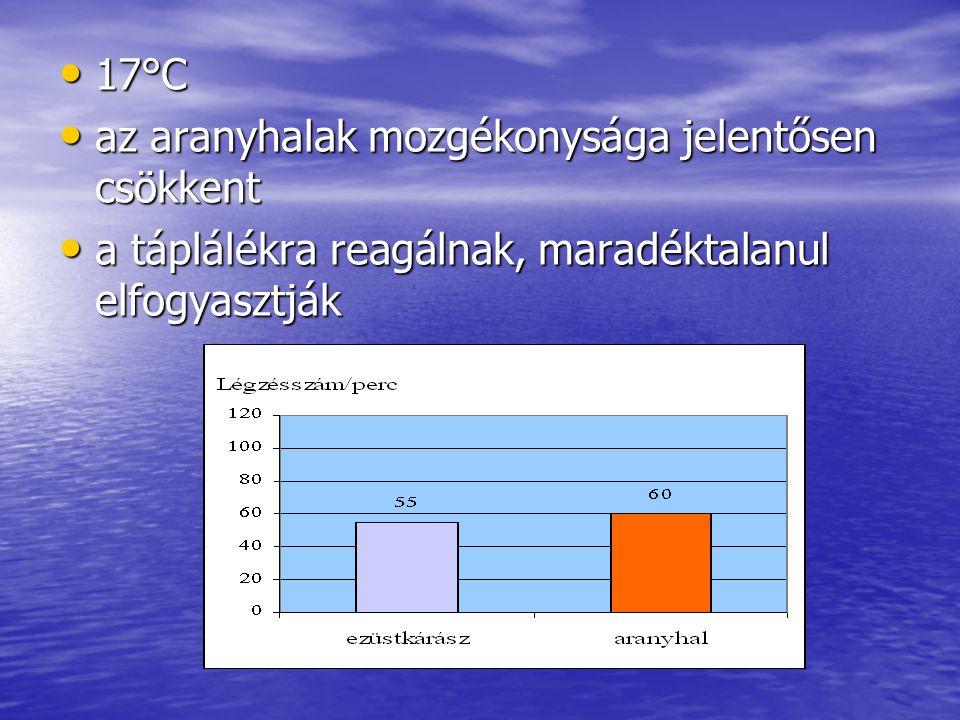 17°C 17°C az aranyhalak mozgékonysága jelentősen csökkent az aranyhalak mozgékonysága jelentősen csökkent a táplálékra reagálnak, maradéktalanul elfogyasztják a táplálékra reagálnak, maradéktalanul elfogyasztják