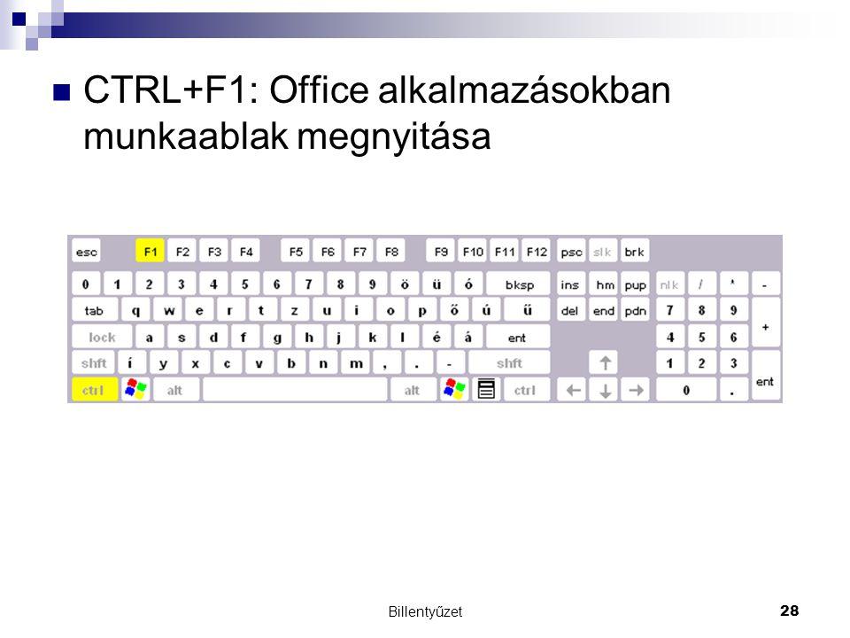 Billentyűzet28 CTRL+F1: Office alkalmazásokban munkaablak megnyitása